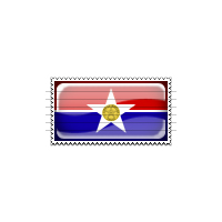 Dallas, Texas Flag Stamp Icon